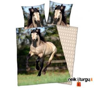 Patalynė su žirgais (3 foto)