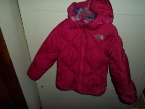 The north face pukine striuke