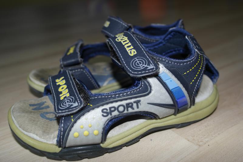 Magnus sport