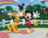 Mikis ir plutas