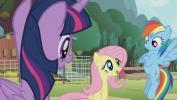 Mano mažasis ponis 4 sezonas<br/>Vanilė