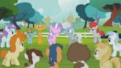 Mano mažasis ponis 4 sezonas<br/>Temsta