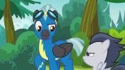 Mano mažasis ponis 7 sezonas<br/>Ženklai ir pramogos