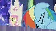 Mano mažasis ponis 7 sezonas<br/>Šešėlių žaidimas 1 dalis
